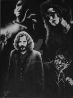 Harry Potter, Voldemort, Sirius and Bellatrix by buntUNDkreativ