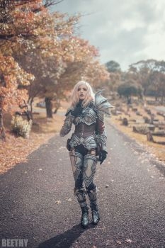 Diablo III - Demon Hunter - 05 by beethy