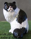 Black and white Persian Cat by ElkStarRanchArtwork