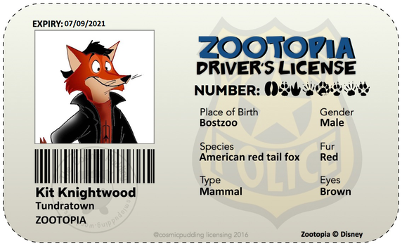 Kit Knightwood Zootopia Driver License by R101D