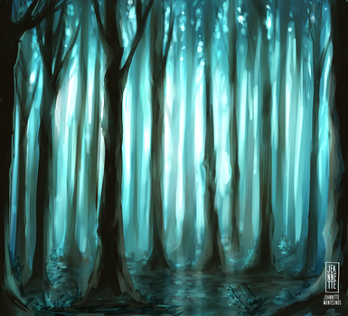 Forest by Jeannette11