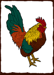 Rooster by maxjwolf