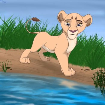 The little lioness by Clara-Lesedi