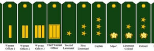 Rank Insignia of the Somali Army, WWIII by tylero79