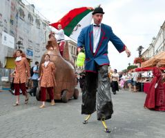 Jagiellonian Fair Parade 3 by vertiser