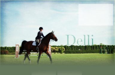 Delli show horse layout by DelliHL