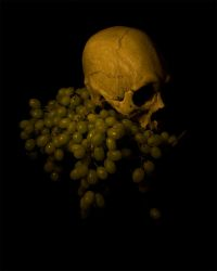 Grapes and Skull by TheVenomousSwan