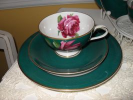 Green Tea Cup and Saucer by BornCrazy7189