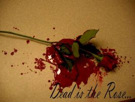 Dead is the Rose by Sonicgirl45