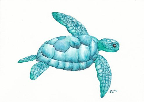 Turquoise turtle by dragonslairnz