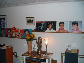 Elvis collection by EgonEagle