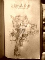 I'm not Crash Bandicoot, I'm Streak(Profile)! by KuraiJinx