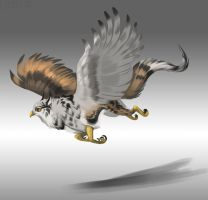 Falcon gryph: closed by Chickenbusiness