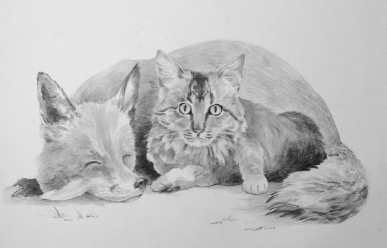Naptime - Graphite by lucius-phoenix
