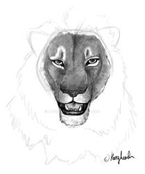 Practice Sketch by lioness17