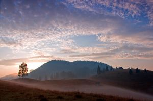 Autumn morning by lica20