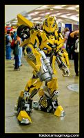 BumbleBee - WonderCon 2009 by faidoi