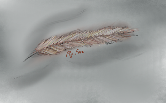 Feather, free use laptop background by Kylee-DC