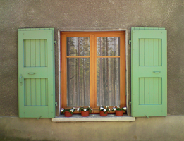 Old French Window 2 by blOntj