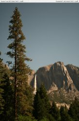 Yosemite 13 pine + waterfall by RoonToo