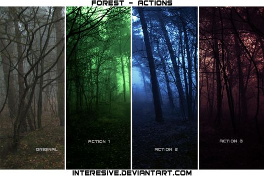 Forest - Actions by interesive