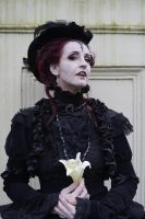 Stock - Vamire woman baroque lady romantic 2 by S-T-A-R-gazer