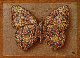 Symbol-Butterfly 16 by INDRIKoff