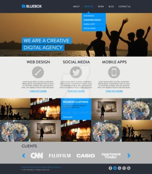Bluebox Website Template by designvibe