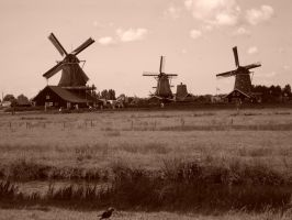 windmills by magv89