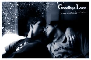 Goodbye Love - Mediagambit by dapride