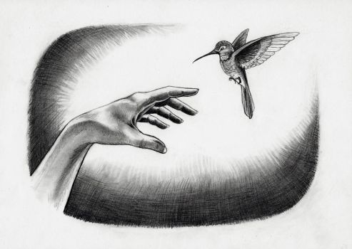Hand and a Hummingbird by celticsidhe