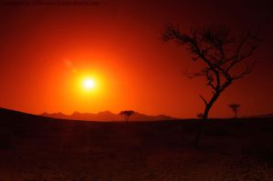 SunSet_41 by alsaigh
