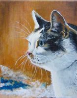 Cats - oil painting on canvas by gosia-jasklowska