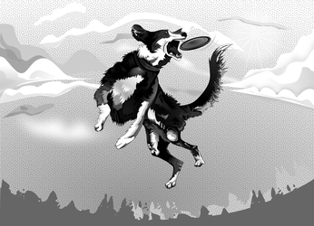 Black and White - Leaping Dog by Golden-Ribbon