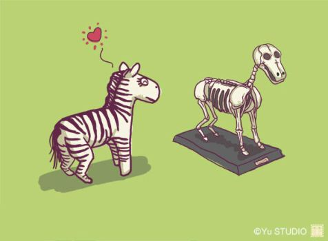Zebra love by Harry-Yu
