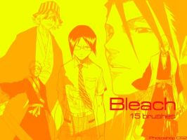 Bleach Photoshop CS2 Brushes by DesignerFake