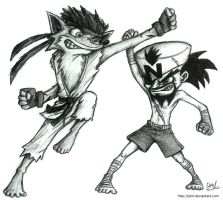 Street Fight: Crash VS. Cortex by JenL