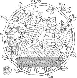 Pygmy Three-Toed Sloth (The Exotic Colouring Book) by megcowley
