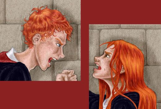 HP- Ron v Ginny by shattered-black-rose