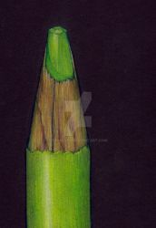 Colored Pencil in Colored Pencil by spinizuey