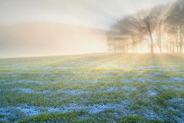 Kincaldrum Frost by Greg-McKinnon
