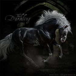 HEE Horse Avatar - The Darkling by VIXEN-STUDIO