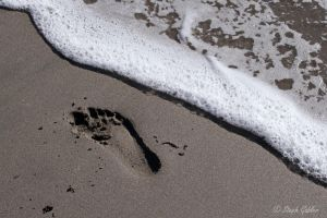 Leave Nothing But Footprints by StephGabler