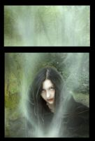 Details - Sorceress by Stockudith