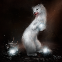 Dark Ermine by Kaprriss