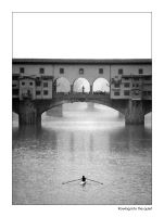 Rowing into the quiet by pecchio