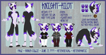 Current SFW Knight-Riot Ref by Flame-Expression