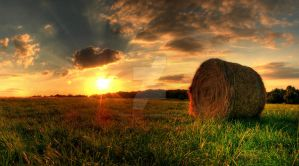 Hay Again by wreck-photography