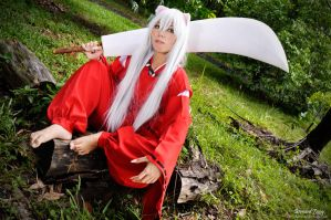 Inuyasha 04 by xavier88