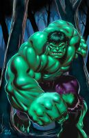 Hulk Digital Painting by SotoColor